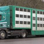 El PE apoya reducir el CO2 de los camiones
