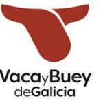 Casi 10.000 cabezas inscritas en la IGP Vaca Gallega / Buey Gallego