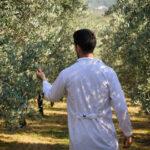 La Junta de Andalucía convoca otros 13 millones de euros para la incorporación de jóvenes gaditanos a la actividad agraria