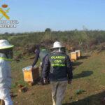 Detenido el supuesto autor de robo de colmenas en Cáceres