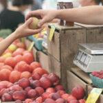 Cataluña y Francia Agricultura lidera el proyecto promueven un proyecto para apoyar la venta de proximidad