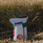 Los abonos de liberación controlada, como la gama Agromaster, aseguran un buen desarrollo del cereal