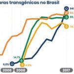Los cultivos transgénicos en Brasil han reducido la aplicación de 800.000 t de fitosanitarios en 20 años