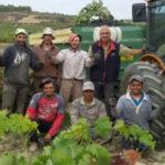 Salarios aprobados para los temporeros para patata y viña en Alava
