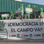 Unión de Uniones inicia una campaña para que se convoquen elecciones en el campo