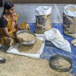 El precio mundial de los alimentos baja en septiembre por la abundante oferta