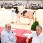 Ayudas en Cantabria para el genotipado de animales en control lechero