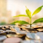 El CESE pide dedicar el 40% del presupuesto al cambio climático