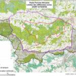 PPA en Bélgica: menos  restricciones y ayudas para los ganaderos afectados
