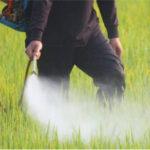 Francia aumenta ligeramente su consumo de fitosanitarios