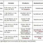 Polonia se une al grupo de países que autoriza la siembra de semilla de remolacha pildorada con neonicotinoides