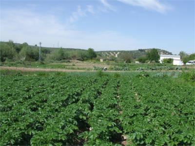 Andalucía establece como inscribirse en el REAFA - Agrodigital